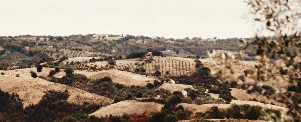 Matrimonio in Toscana Grosseto vista panoramica