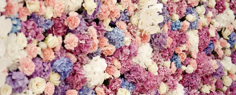 fiori usati per bouquet